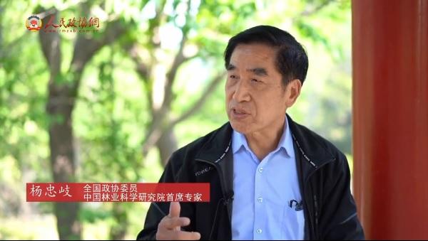 人民政协网采访杨忠岐:小小蚂蚁,因何惊动九部门?