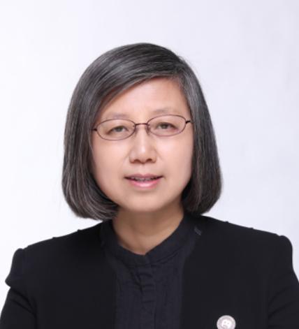 刘怡:促进经济发展的税制选择